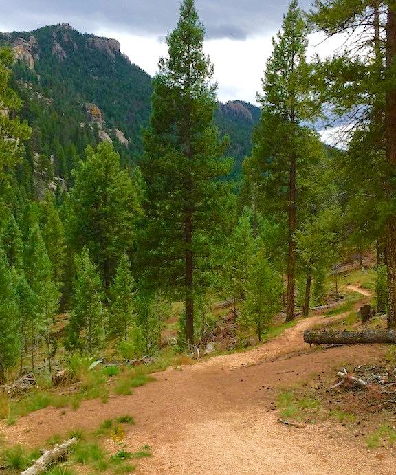 BC Trail 4