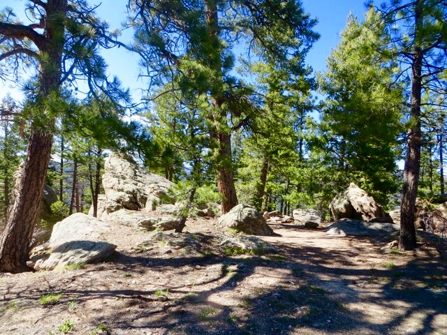 BC trail 2