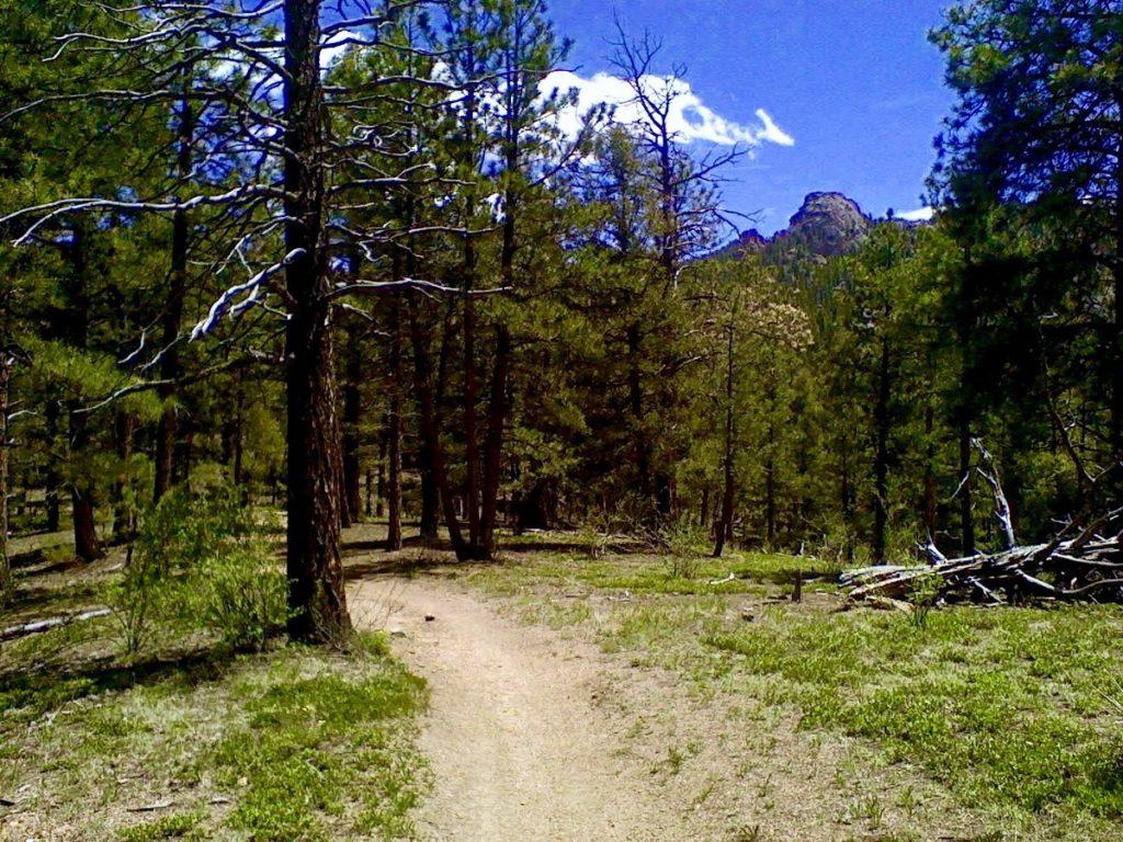 BC trail 5