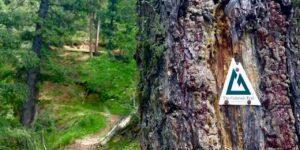 BC Trail Seg 2